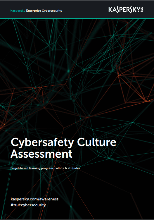 Cybersafety Culture Assessment