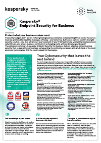 KASPERSKY ENDPOINT SECURITY FOR BUSINESS - DATENBLATT